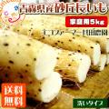 青森県産長芋
