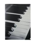 Shinning A4クリアファイル ピアノ ☆※お取り寄せ商品 【音楽雑貨 音符・ピアノモチーフ】ト音記号 ピアノ雑貨