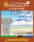 キリマンジャロコーヒー テンボテンボ農園 コーヒー豆