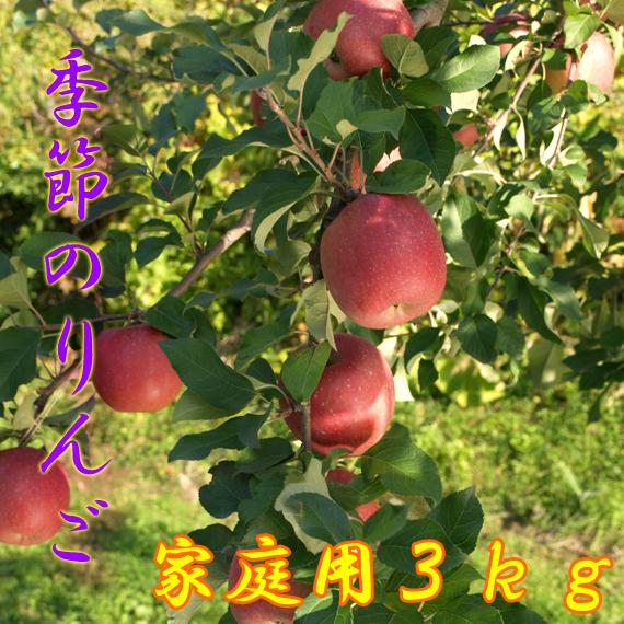 季節のりんご