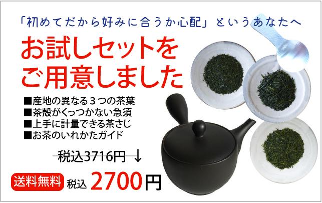 日本茶お試しセット 茶葉3種類、常滑急須付き