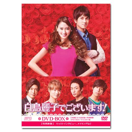 【チバテレ先着購入でサイン入りクリアファイルプレゼント】ドラマ白鳥麗子でございます!DVD-BOX