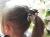 親子お揃い(ペアヘアアクセサリー)専門店ジュメルチェックとチョコブラウンリボン子どもシュシュ【出産祝い/誕生日/妻】メイン1