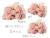 【親子お揃いプレゼント】ジュメル神戸オーガニックコットン100%ピンクボーダーとピンクリボンシュシュ3サイズ