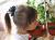 【親子お揃いプレゼント】ネイビーとボーダーネイビーリボンの子どもシュシュ【出産祝い/誕生日/ジュメル神戸/クリスマス】画像