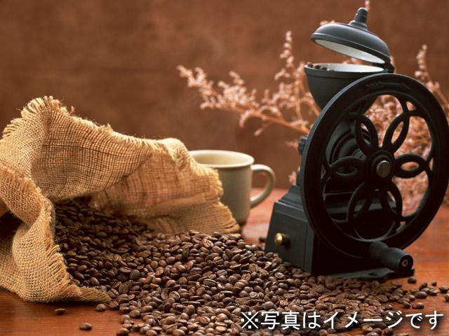 月替り珈琲豆