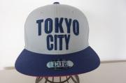 TOKYO CITY (ネイビー/グレー)