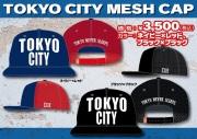 TOKYO CITY MESH��vol.2
