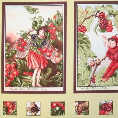 【Flower Fairies】フラワーフェアリー パネルプリント 60×110cm(UFF-010)