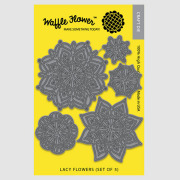 【ワッフルフラワー/waffle flower】ダイ - Lacy Flowers