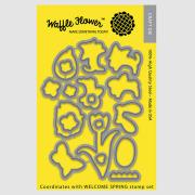 【ワッフルフラワー/waffle flower】ダイ - Welcome Spring