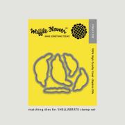 【ワッフルフラワー/waffle flower】 - Shellabrate