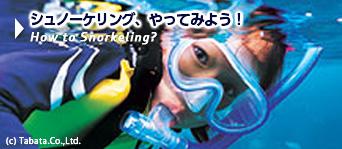 シュノ―ケリング、やってみよう