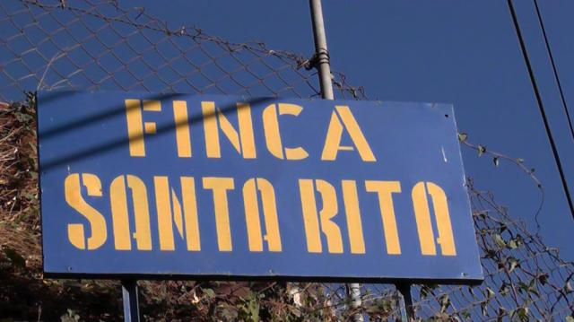 サンタリタ①