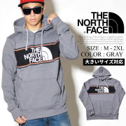 THE NORTH FACE ザノースフェイス プルオーバーパーカー メンズ ロゴ NF0A352F NFPT002