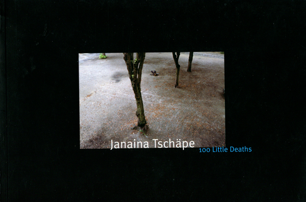 Janaina Tschape: 100 little deaths