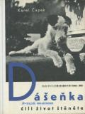 ダーシェンカ あるいは子犬の生活
