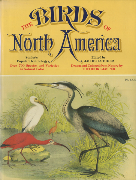 The Birds of North America - Studer's Popular Ornithology