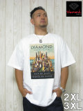 DIAMOND SUPPLY CO.(ダイヤモンドサプライ)「EXCESS 2」TEE<ホワイト>