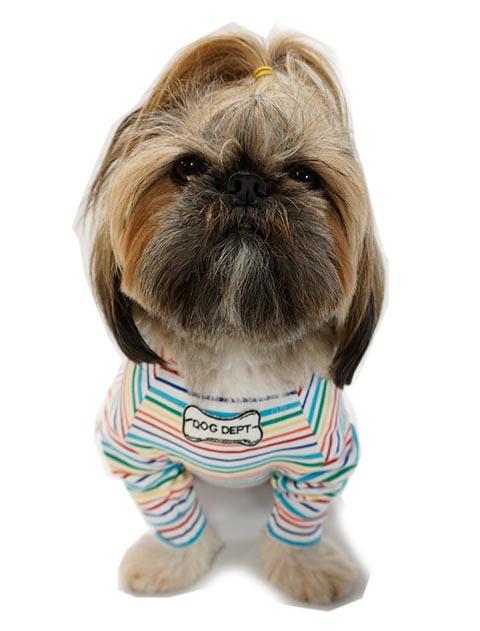 【DOG WEAR】おすわり総柄リバーシブル