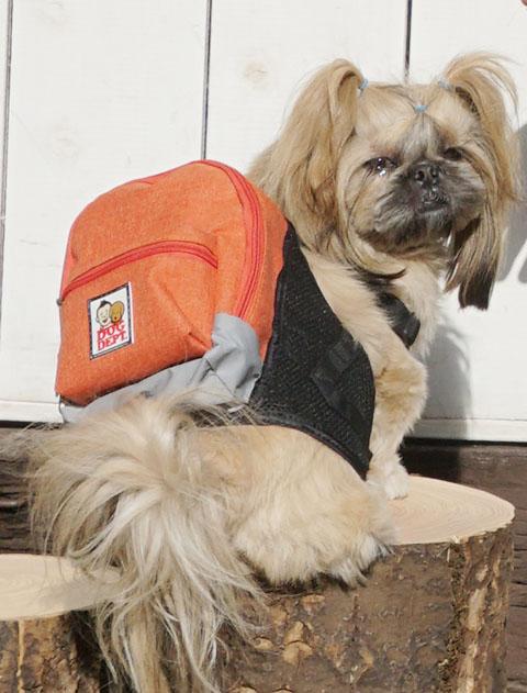【DOG WEAR】スラブボーダーノースリーブ
