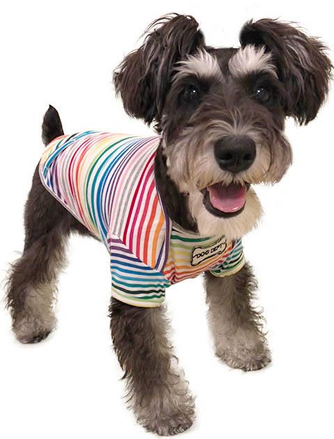 【DOG WEAR】レインボーボーダーTシャツ