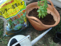 有機堆肥×高級培養土セット