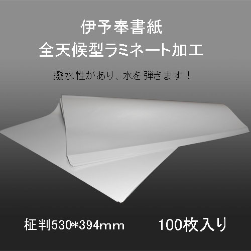 607210 奉書紙 全天候型ラミネート加工奉書 柾判530*394mm 60g/1平米 100枚包み