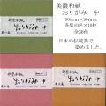 608005s 美濃和紙 おりがみ中10色×各10枚 100枚入り 選択