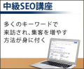 【セミナーDVD】専門(中級)SEO講座