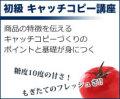 【セミナーDVD】専門(初級)キャッチコピー講座