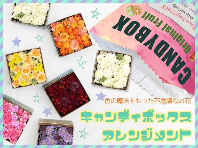 全8色から選べるキャンディボックスアレンジメント