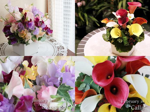 季節の花のアレンジメント「1月スイートピー」「2月カラー」