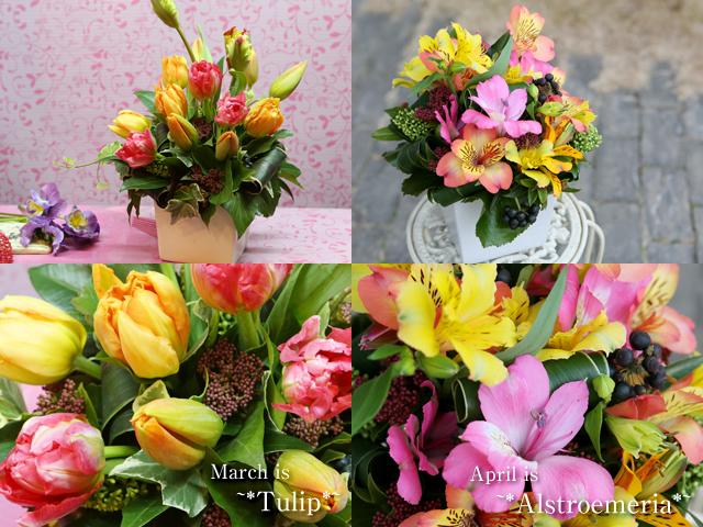 季節の花のアレンジメント「3月チューリップ」「4月アルストロメリア」