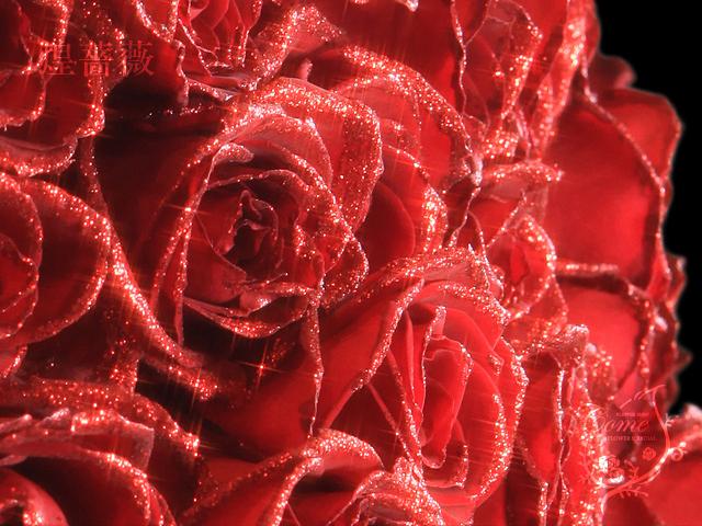 珍しい赤バラ(ラメ入り)煌薔薇