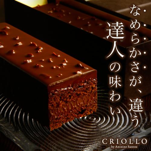 【チョコレートケーキ】トレゾー・ナチュール