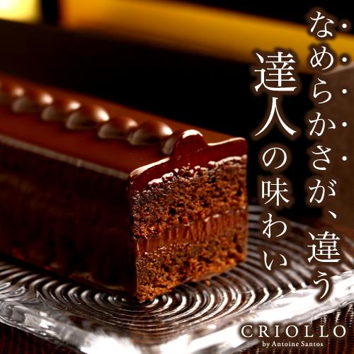 【チョコレートケーキ】トレゾー・スペシャル