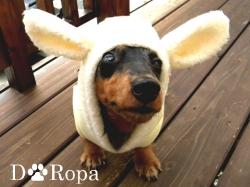 犬の服専門の店 イディアワン