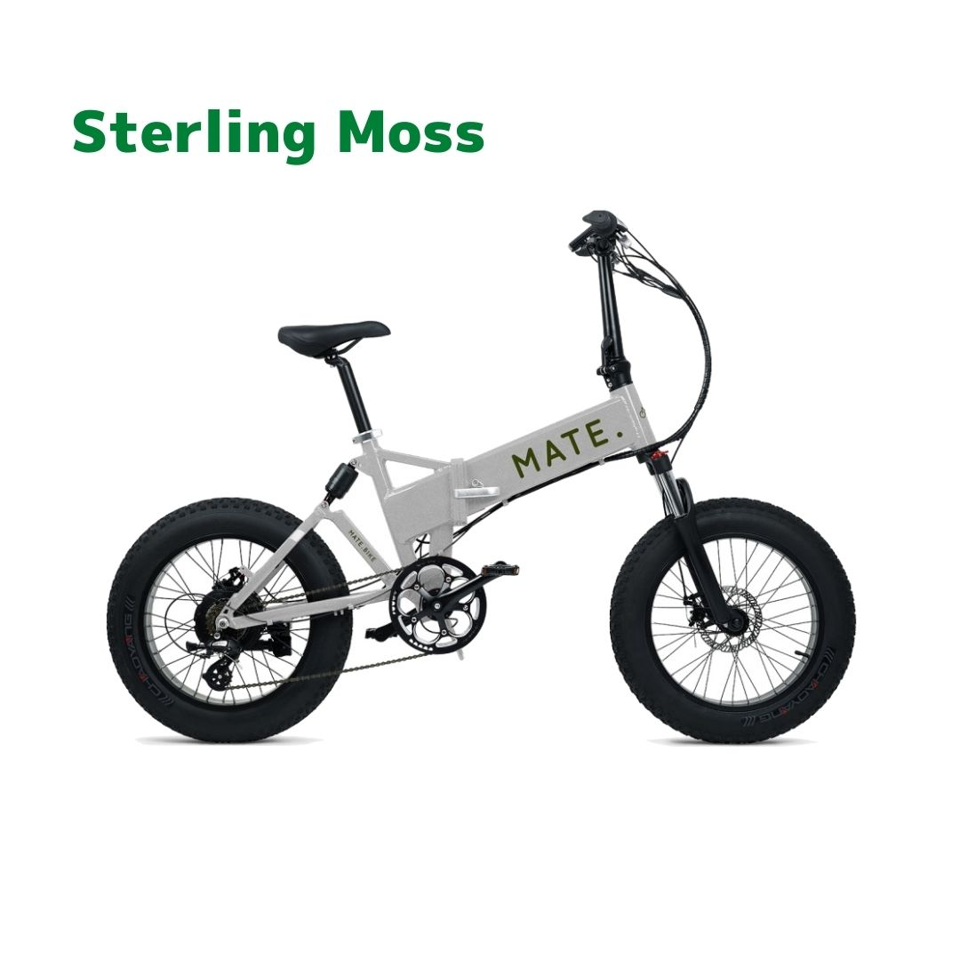 【1月入荷予定】MATE. BIKE MATE-X 250 Sterling Moss