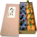 岩清水5+柿つづみ5