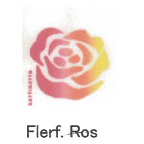 カティナット KATTINATT スポンジワイプ・キッチンワイプ(ディッシュクロス) バラ(レインボー)flerf ros