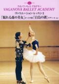 ヴァリエーション・レッスン2 「眠れる森の美女」オーロラ姫「白鳥の湖」オディール ほか(DVD)