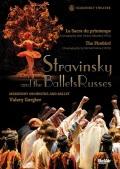 マリインスキー・バレエ 「火の鳥」「春の祭典」 (直輸入DVD)