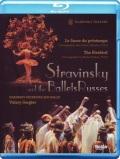 マリインスキー・バレエ 「火の鳥」「春の祭典」  (直輸入Blu-ray)