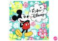 �����Disney(�ǥ����ˡ�)