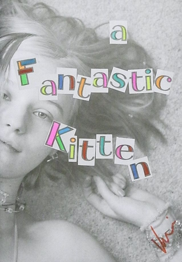 【古本】ヴァレリー・フィリップス写真集 : VALERIE PHILLIPS : A FANTASTIC KITTEN