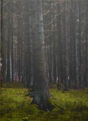 クラウディア・エイネルマン写真集 : CLAUDIA HEINERMANN : WOLFSKINDER : A POST-WAR STORY