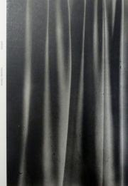 �ڥ��������۲�������̿��� : YOKOTA DAISUKE : VERTIGO