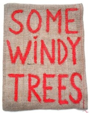 �ڥ��쥯���������ǥ������ۥ����󥻥�ȡ��ǥ�֥�å��̿��� : V.D. : VINCENT DELBROUCK : SOME WINDY TREES #1