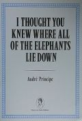 ANDRE PRINCIPE : I THOUGHT YOU KNEW WHERE ALL OF THE ELEPHANTS LIE DOWN